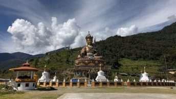 The Sacred Takila Tour